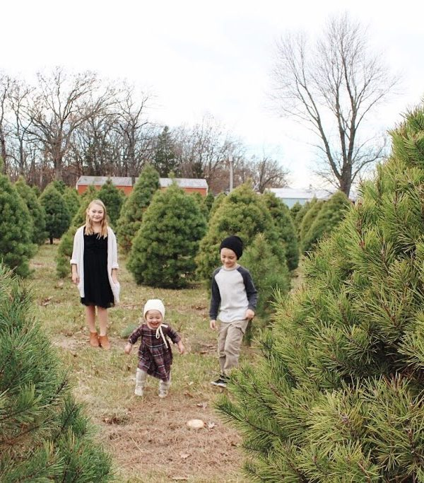 Christmas Tree Hunting // A New Family Tradition